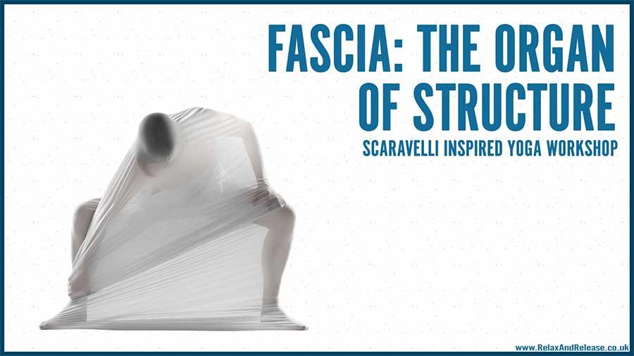 Scaravelli, Yoga, Workshop, Fascia, Catherine Annis