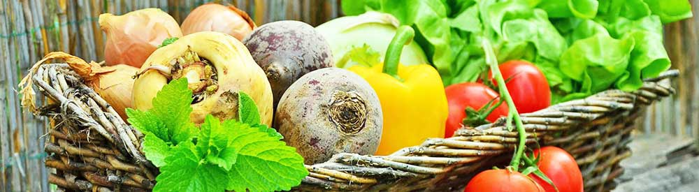 Freash organic food