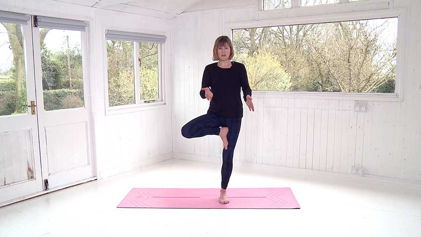 Online Yoga Class Tree Pose Tutorial Intelligent Yoga Teacher Training London
