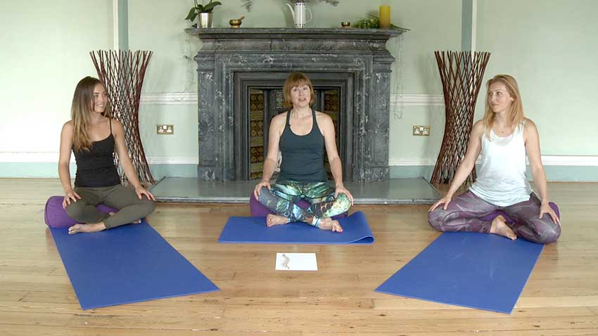 Online Yoga Class Lengthening The Spine Intelligent Yoga Teacher Training London
