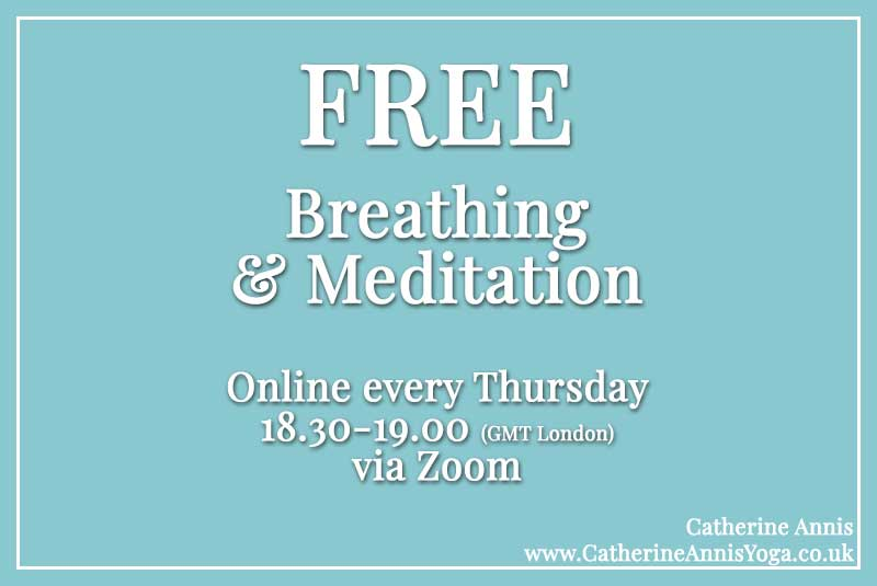 Zoom, yoga Breathing Meditation, Vanda Scaravelli, Home, Laptop, Mobile, online,Catherine Annis