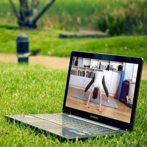 Scaravelli yoga, live stream, zoom, triyoga, Yogaloft, Indaba, Yogarise, Evolve, online, home, Catherine Annis Yoga