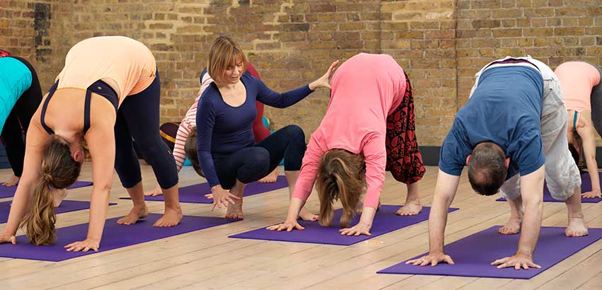 British wheel of yoga training, Scaravelli, Hatha, London, accredited, teacher