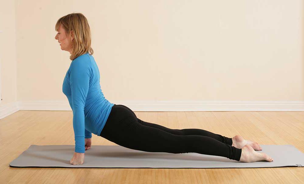 Scaravelli Inspired Yoga Workshop, Head, Neck, Shoulders, Anatomy