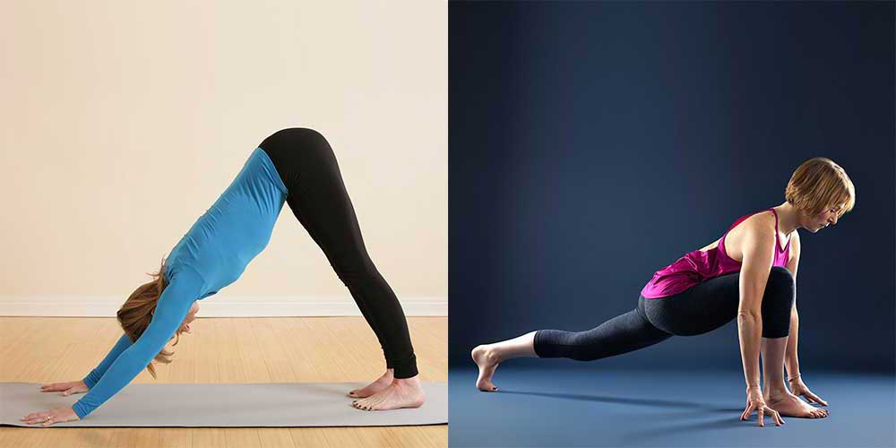 Scaravelli Inspired, Yoga Workshop, Anatomy, Psoas Muscle, Catherine Annis