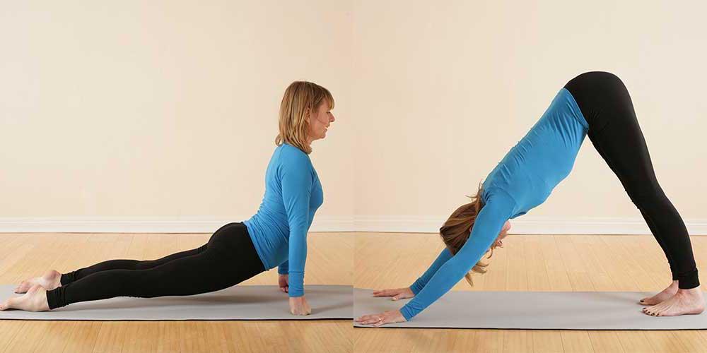 Scaravelli Inspired Yoga, Workshop, Vagus Nerve, 2021, Catherine Annis, online, zoom