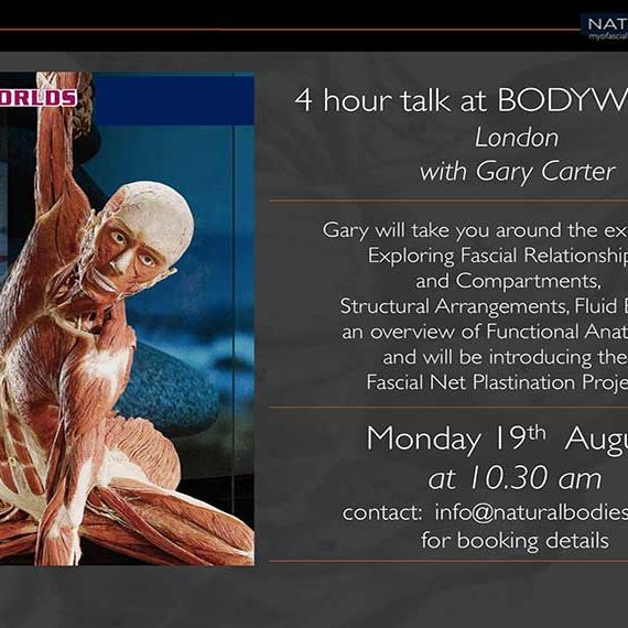 Body Worlds, Gary Carter, London, Fascia, Plastination, Anatomy, Functional